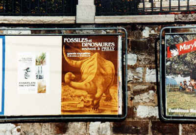 compr_25_affiche_expo_dinosaures_1983.jpg (85726 octets)